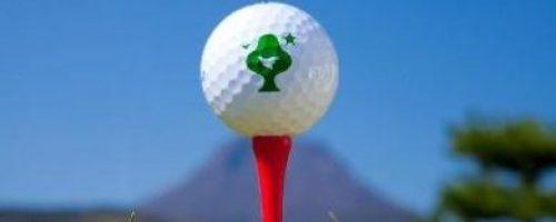 城島高原ゴルフ
